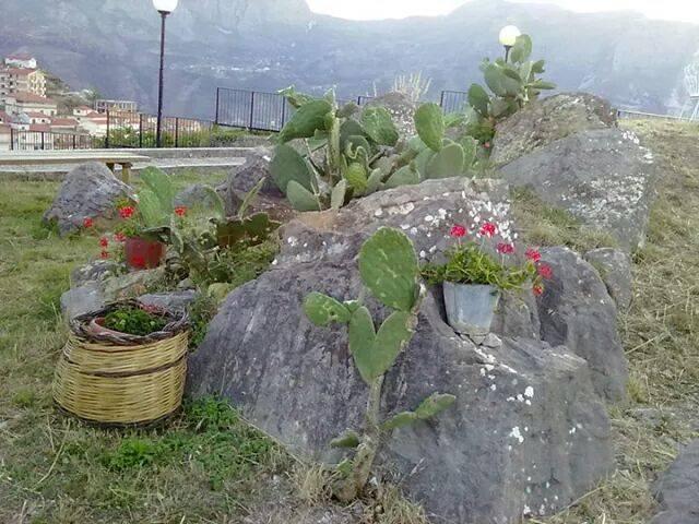 Foto tratta dal profilo Facebok di NuovaMente Galati scattata quando i ruderi erano curati da cittadini che ne avevano fatto un luogo di ritrovo