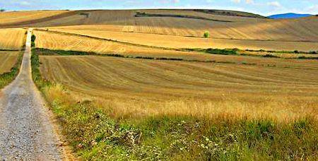 Viabilità rurale