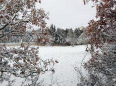 Maltempo: vento e neve in Puglia, 'spruzzata' anche a Lecce
