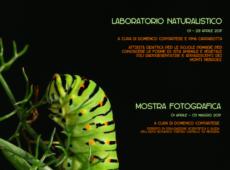 laboratorio-naturalistico