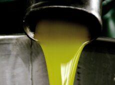 Produzione di olio extravergine d'oliva, Italia superata dalla Grecia
